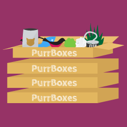 purrboxstack